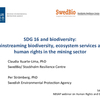 Webinar #2: Human Rights, Business and Biodiversity (PPT 1)