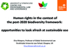 Webinar #3: Human Rights in the Context of  the CBD's post-2020 Strategic Plan (PPT 2)